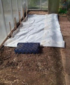 greenhouse-with-row-cover-2