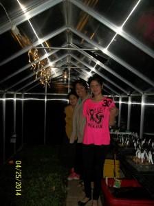 greenhouse_night2