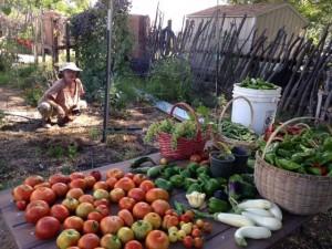 produce_summer